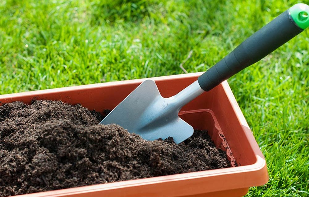 How to make your own compost heap