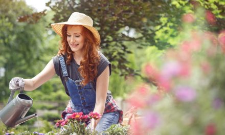 How to prepare your garden for when you go on holiday
