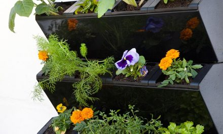 How to create a self-watering vertical garden