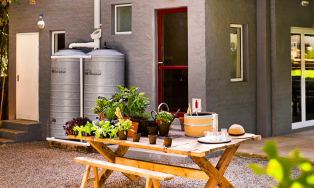 How to collect and use rainwater in your home