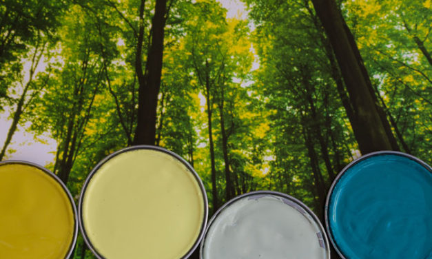 What you need to know about paint, your health and the environment