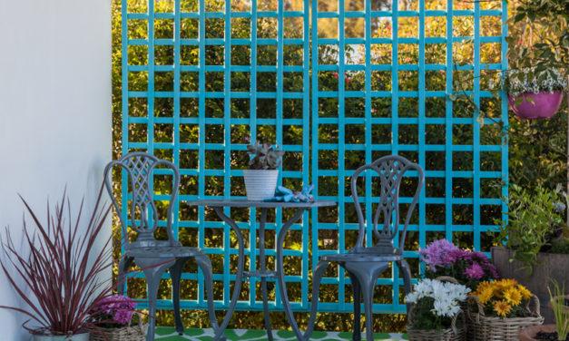 How to spray paint a trellis for the garden