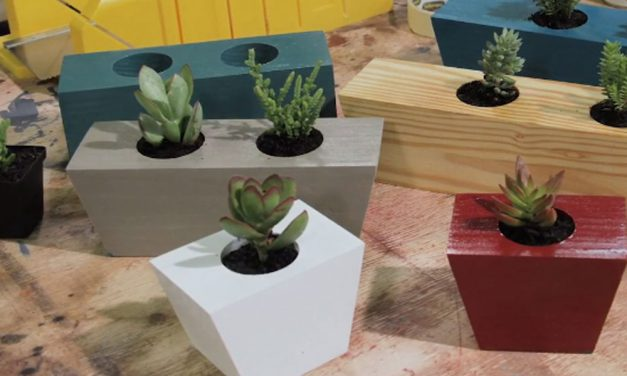 How to make an ornamental succulent planter