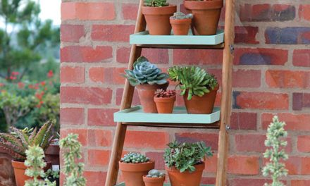 How to turn a ladder into an outdoor display