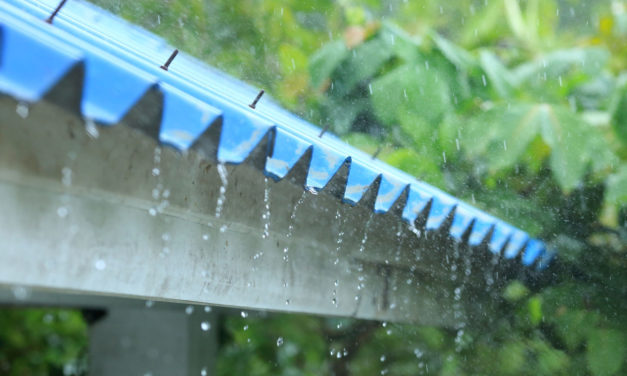 How to weather-proof and paint your roof