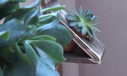 How to make a vertical wall planter
