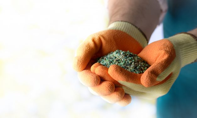 How to use fertilisers in your garden