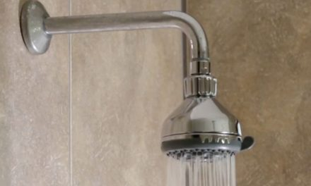 Product Review: Ellies Protea shower head