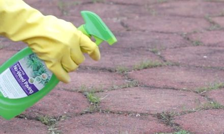 How to use non-selective herbicides