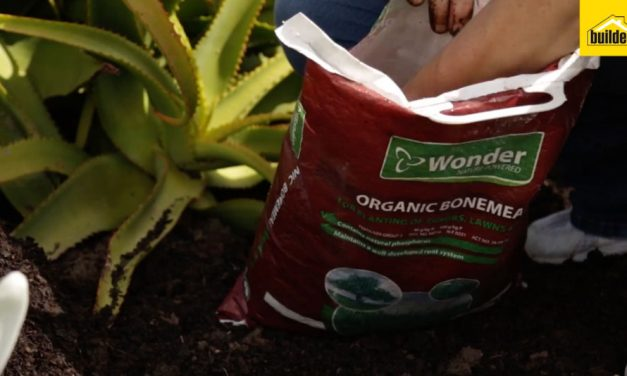 How to plant fertilisers, bone meal and superphosphate