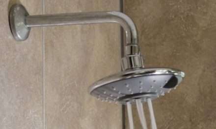 Product Review: Ellies marigold showerhead
