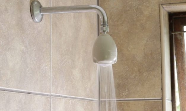 Product Review: Ellies Rosebud shower head