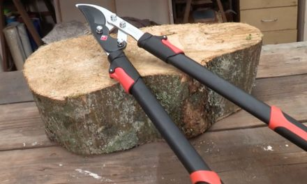 Product Review: Garden Master Telescopic Bypass Loppers