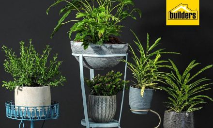 How to bring vintage planters back to life