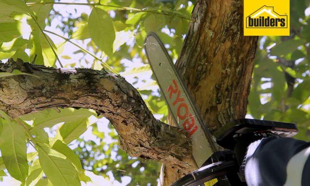 Product Review: Ryobi 40cc Petrol Chain Saw