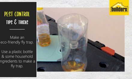 How to make an eco-friendly fly trap