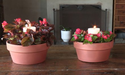 How to plant a garden candle holder