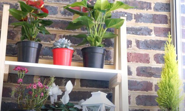 How To Make a 4 Tier Plant Shelf