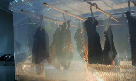How To Make a Biltong Dryer