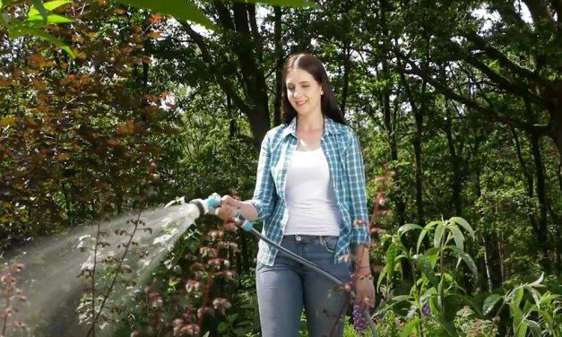 Cellfast in your garden