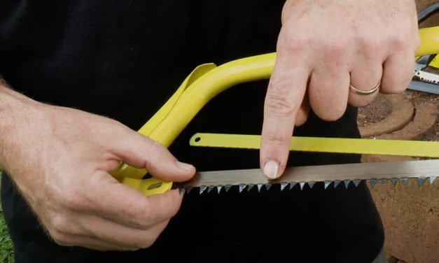 Bow Saws and Pruning