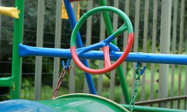 Jungle Gym Refurb with Environmentally Friendly Paint