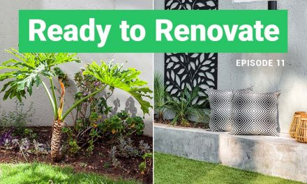 Episode 11 – Garden Revamp