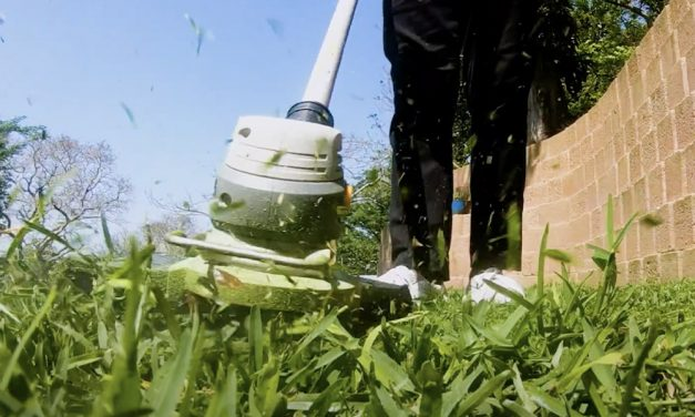 Ryobi Cordless Line Trimmer Makes Trimming Your Lawn Edging Fast & Easy
