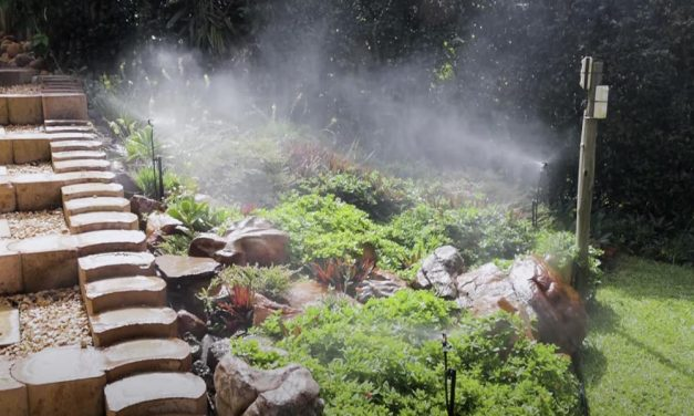 Irrigation 101 – How To Install Your Own Basic Irrigation System