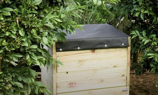 Make Your Own Compost Bin With This Simple DIY