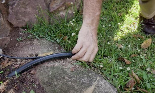 Irrigation | Buried Or Surface Irrigation Piping. Which Is Right For Your Garden?