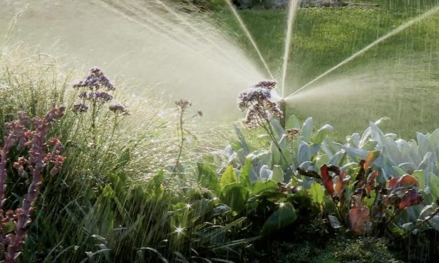 Irrigation | How To Maintain Your Irrigation System
