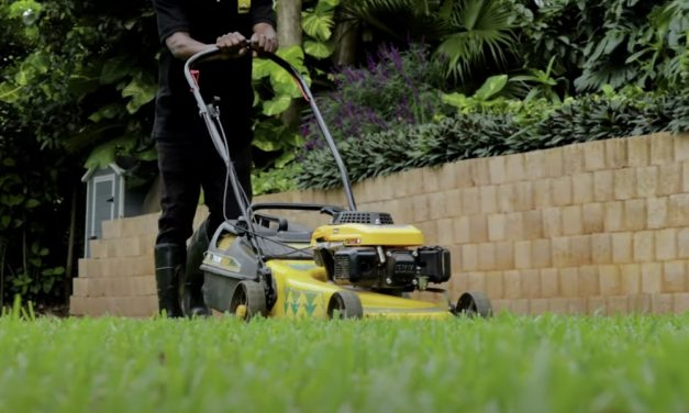 There Is More To Mowing & Edging Your Lawn Than You Know